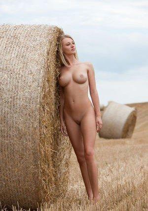 Free Farm Porn