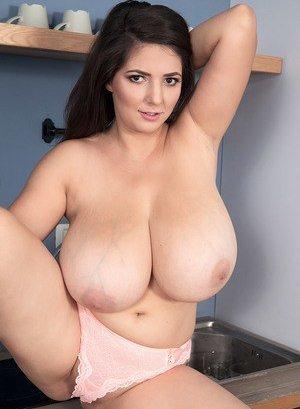 Free Chubby Porn